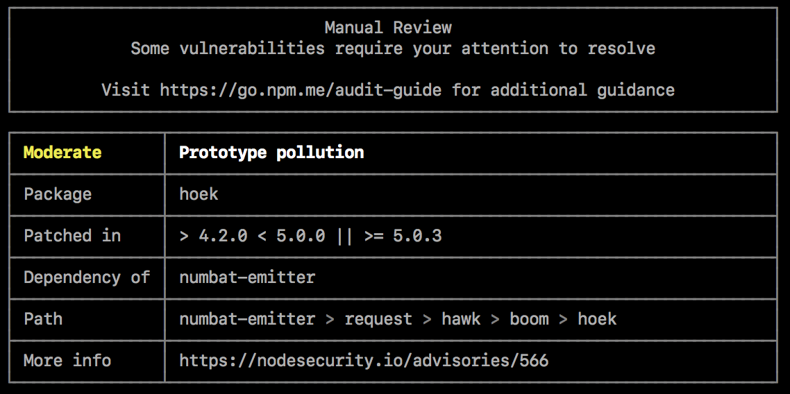 Screenshot of command-line audit results requiring a manual review